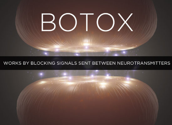 how-botox-works